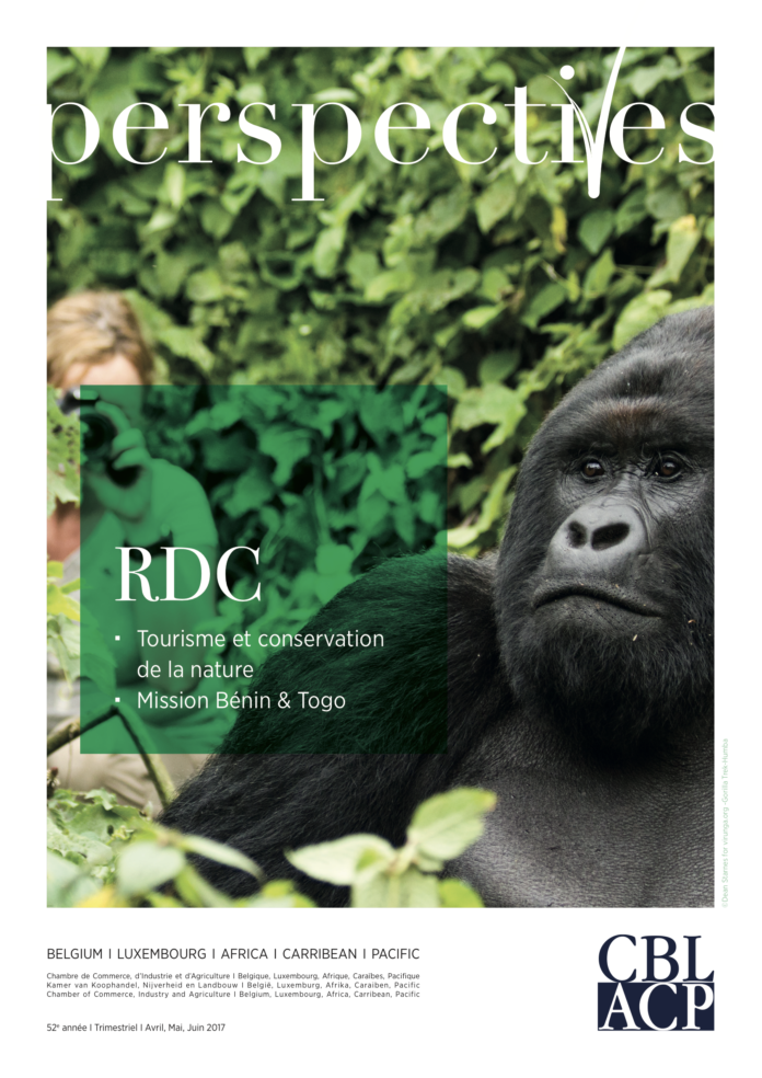 Perspectives - Focus : Congo